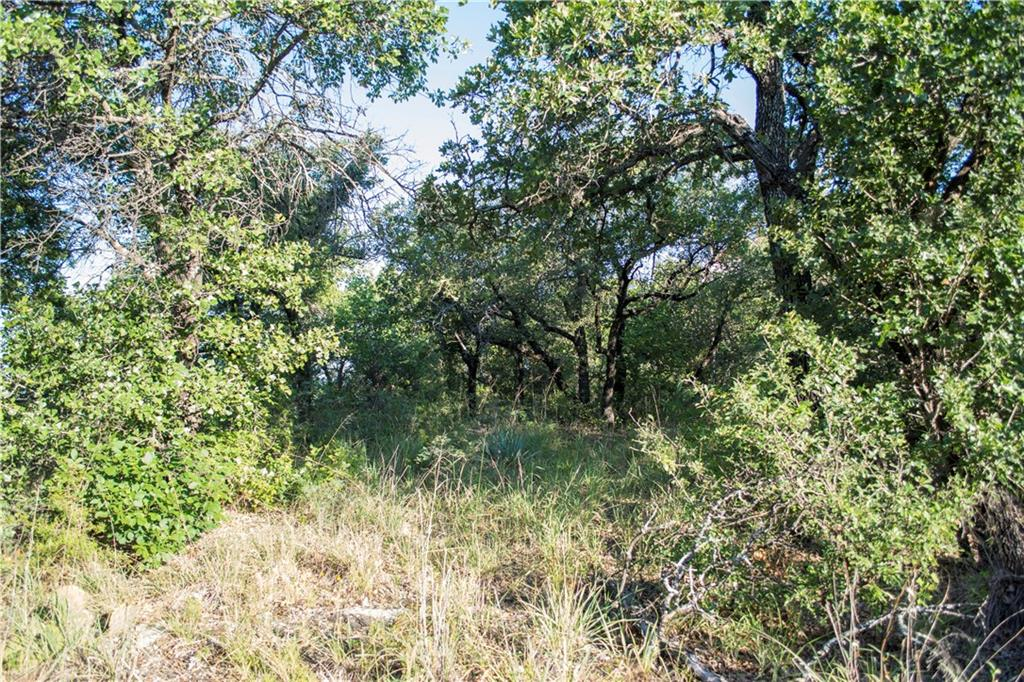 Sold Property | 485 Valley Vista  Drive Gordon, TX 76453 10