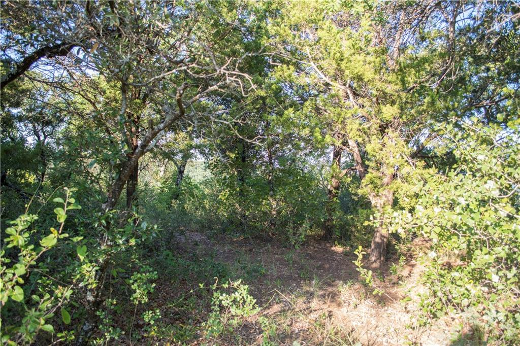 Sold Property | 485 Valley Vista  Drive Gordon, TX 76453 4