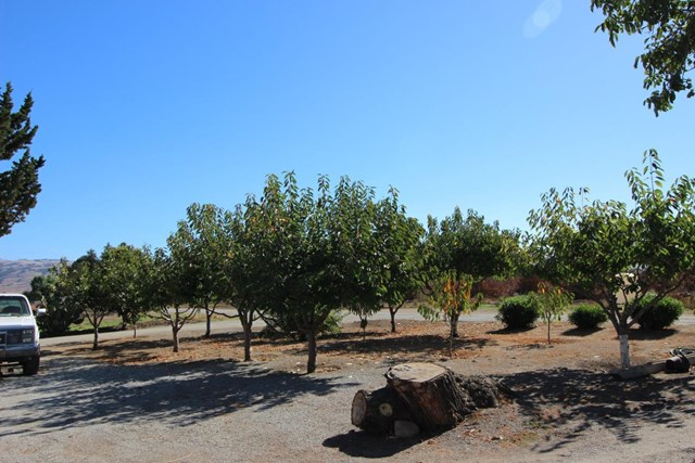 Off Market | 2025 Pacheco Pass Highway Gilroy, CA 95020 4