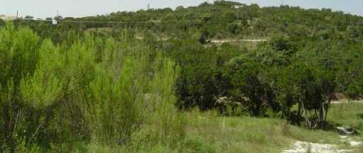 Sold Property | 19800 AGUA FRIO DR Lago Vista, TX 78645 2