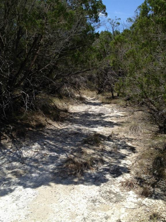 Closed | Mcgregor 13.0 Acres Lane Dripping Springs, TX 78620 0