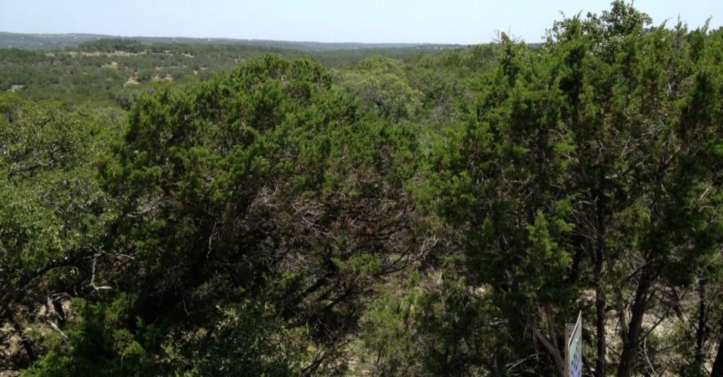 Closed | Mcgregor 13.0 Acres Lane Dripping Springs, TX 78620 1