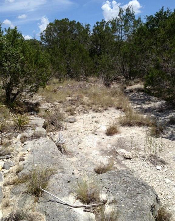 Closed | Mcgregor 13.0 Acres Lane Dripping Springs, TX 78620 4