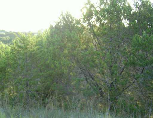 Sold Property | 20104 CHAMPLAIN CV Lago Vista, TX 78645 0