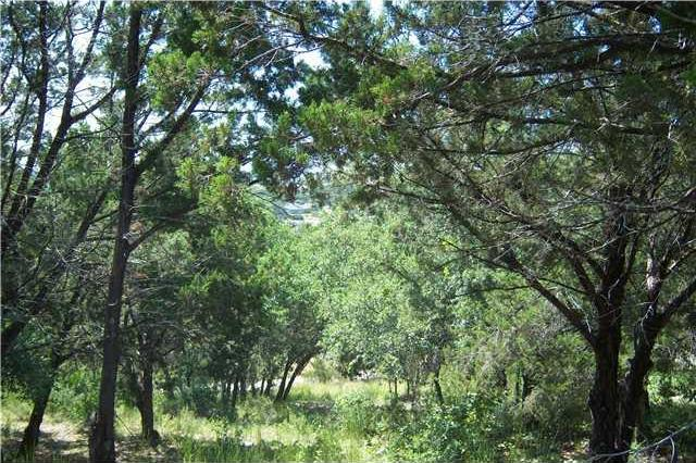 Sold Property | 21424 Noack HL Spicewood, TX 78669 2