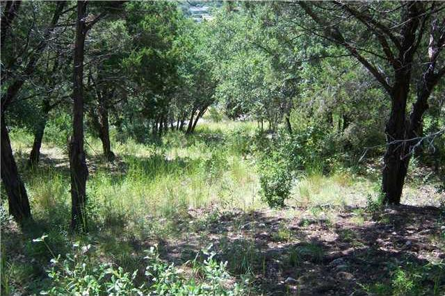 Sold Property | 21424 Noack HL Spicewood, TX 78669 3