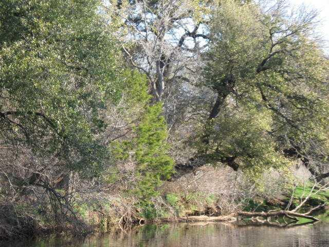 Sold Property | 469 County Road 423 Cherokee, TX 76832 11