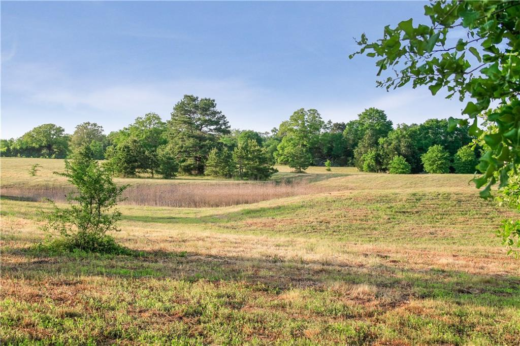 Land for Sale in Bastrop, Farm for Sale in Bastrop, Ag Exempt, Preoperty for sale | 001 Antioch Road Paige, TX 78659 4