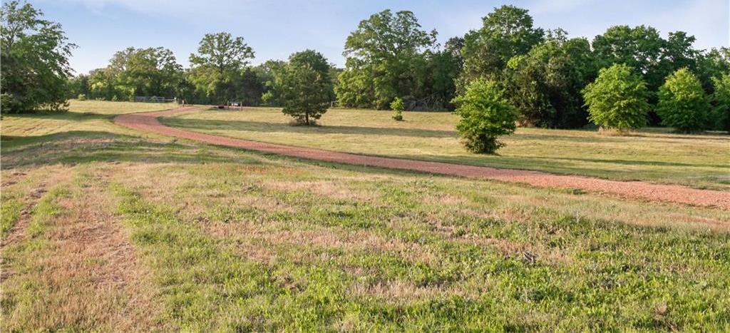 Land for Sale in Bastrop, Farm for Sale in Bastrop, Ag Exempt, Preoperty for sale | 001 Antioch Road Paige, TX 78659 5