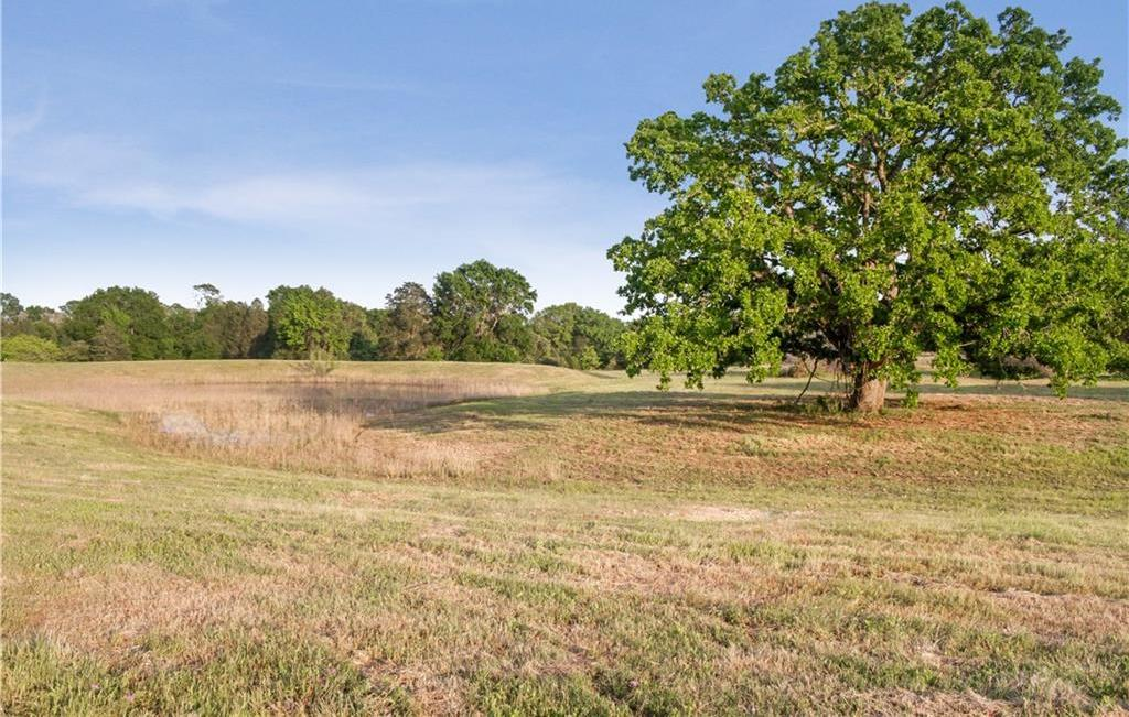 Land for Sale in Bastrop, Farm for Sale in Bastrop, Ag Exempt, Preoperty for sale | 001 Antioch Road Paige, TX 78659 6