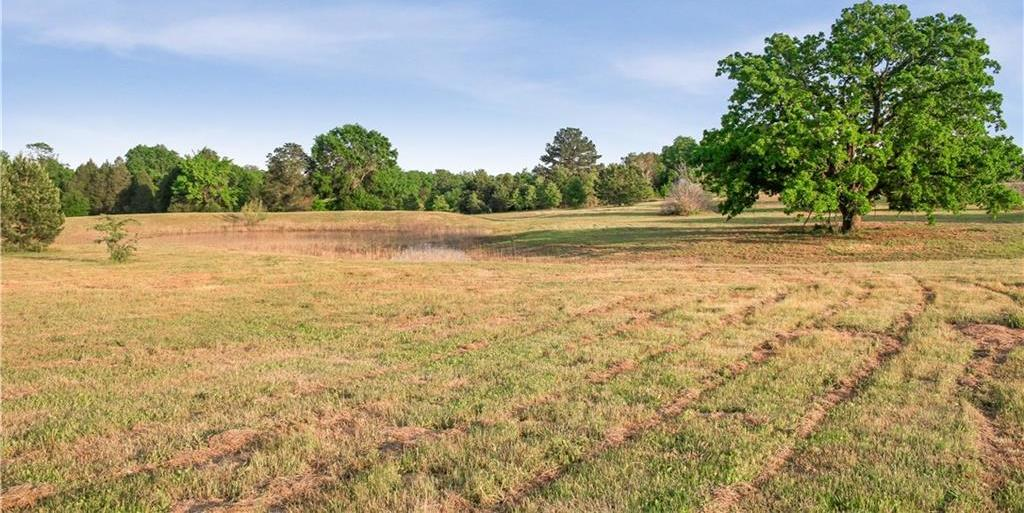 Land for Sale in Bastrop, Farm for Sale in Bastrop, Ag Exempt, Preoperty for sale | 001 Antioch Road Paige, TX 78659 7