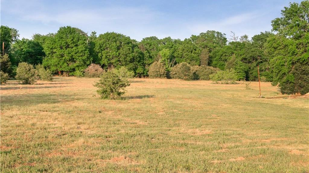 Land for Sale in Bastrop, Farm for Sale in Bastrop, Ag Exempt, Preoperty for sale | 001 Antioch Road Paige, TX 78659 8