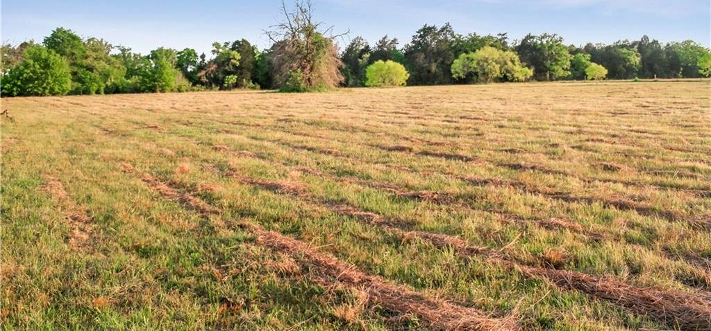 Land for Sale in Bastrop, Farm for Sale in Bastrop, Ag Exempt, Preoperty for sale | 001 Antioch Road Paige, TX 78659 9