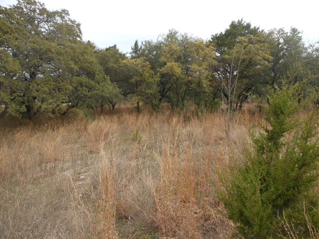 Sold Property | 10506 Deer Canyon RD Jonestown, TX 78645 7