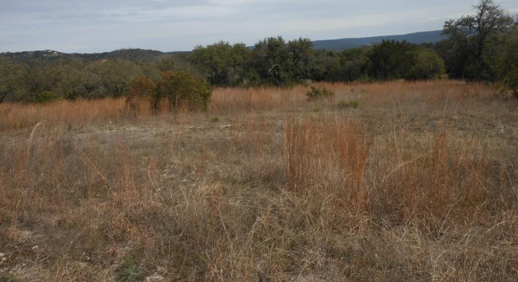 Sold Property | 10506 Deer Canyon RD Jonestown, TX 78645 8