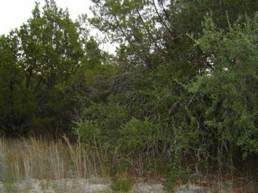 Sold Property | 21804 Thorpe Circle Lago Vista, TX 78645 1