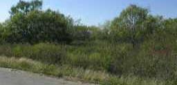 Withdrawn | 110 ROYAL  Cedar Creek, TX 78612 0