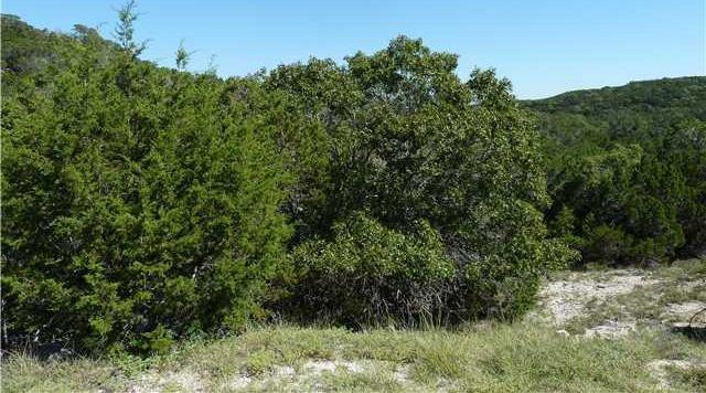 Sold Property | 184 Jeanette Circle Canyon Lake, TX 78133 2