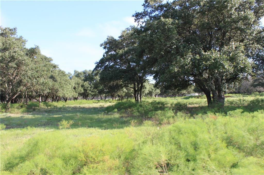 Sold Property | 250 S Encino XING Liberty Hill, TX 78642 6