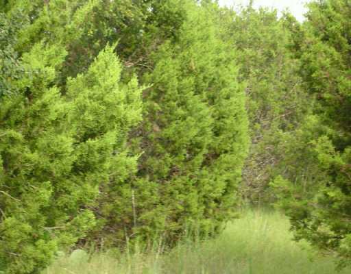 Sold Property | 9305 RUNNING BROOK CV Lago Vista, TX 78645 0