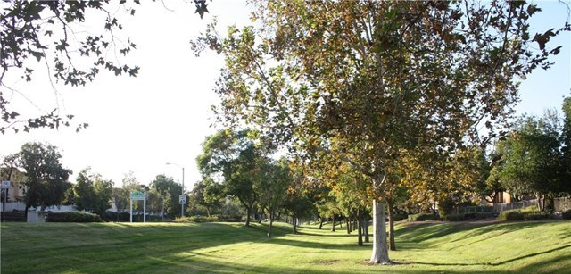 Active | 6277 Sunny Meadow Lane Chino Hills, CA 91709 38