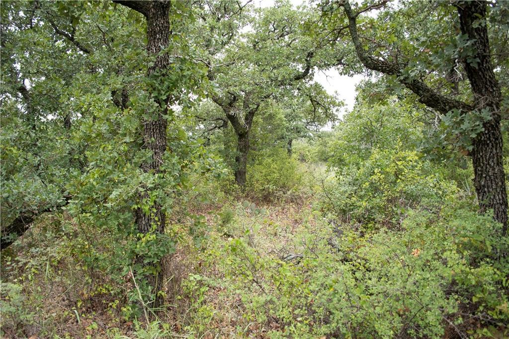 Active | Lot26G Stagecoach Trl.  Gordon, TX 76453 11