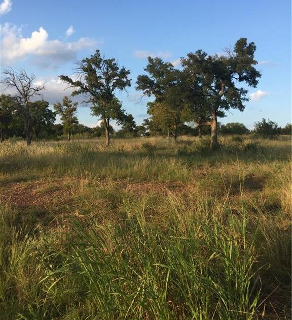 Sold Property | Lot 8 Falling Creek Cove  Marble Falls, TX 78654 5