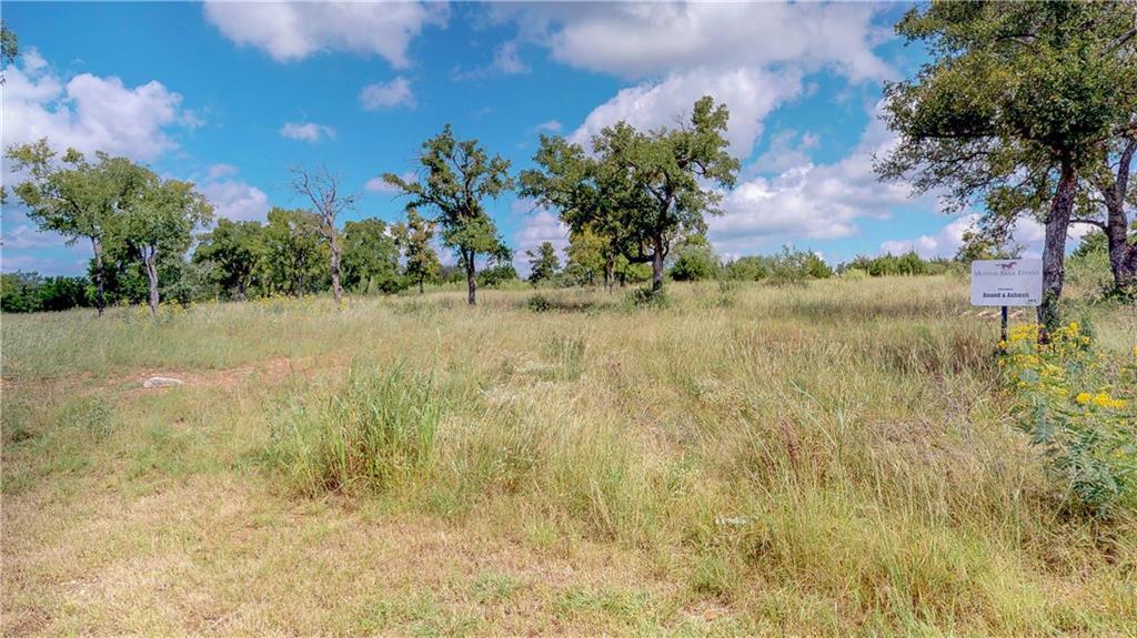 Sold Property | Lot 8 Falling Creek Cove  Marble Falls, TX 78654 9