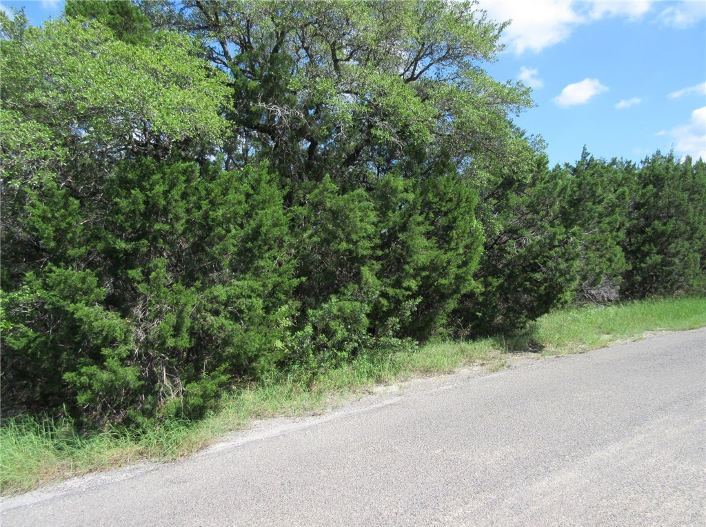 Sold Property | 00 Terrace Drive Jonestown, TX 78645 2