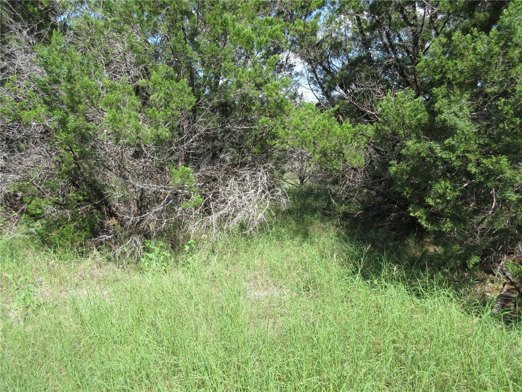 Sold Property | 00 Terrace Drive Jonestown, TX 78645 5