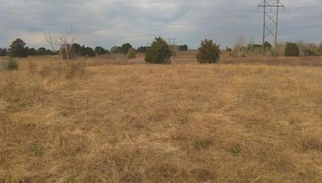 Sold Property   00 Maler Road Sealy, Texas 77474 9