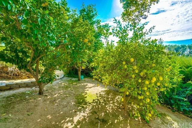 Closed | 7874 Buena Vista Drive Rancho Cucamonga, CA 91730 63
