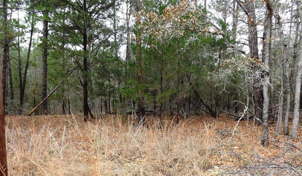 Sold Property | 00 Stephen Lane La Grange, Texas 78945 0