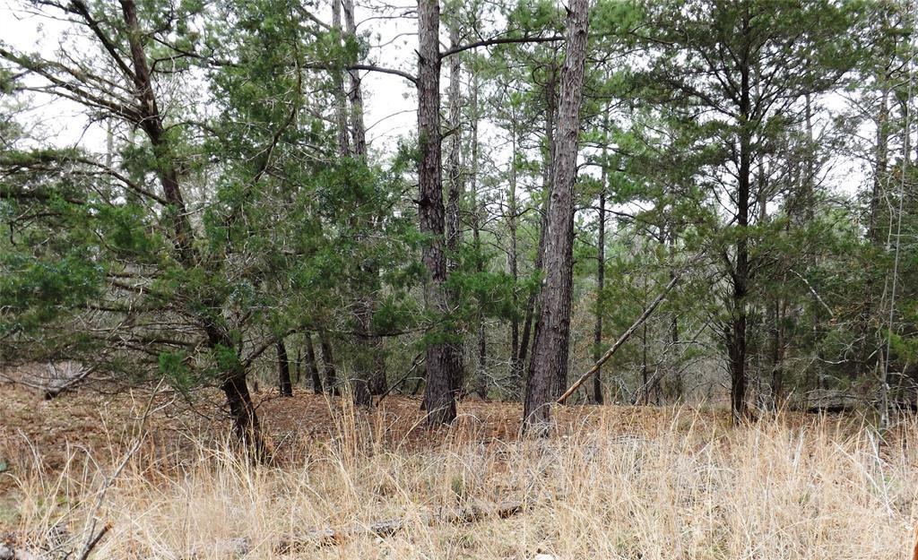 Sold Property | 00 Stephen Lane La Grange, Texas 78945 1