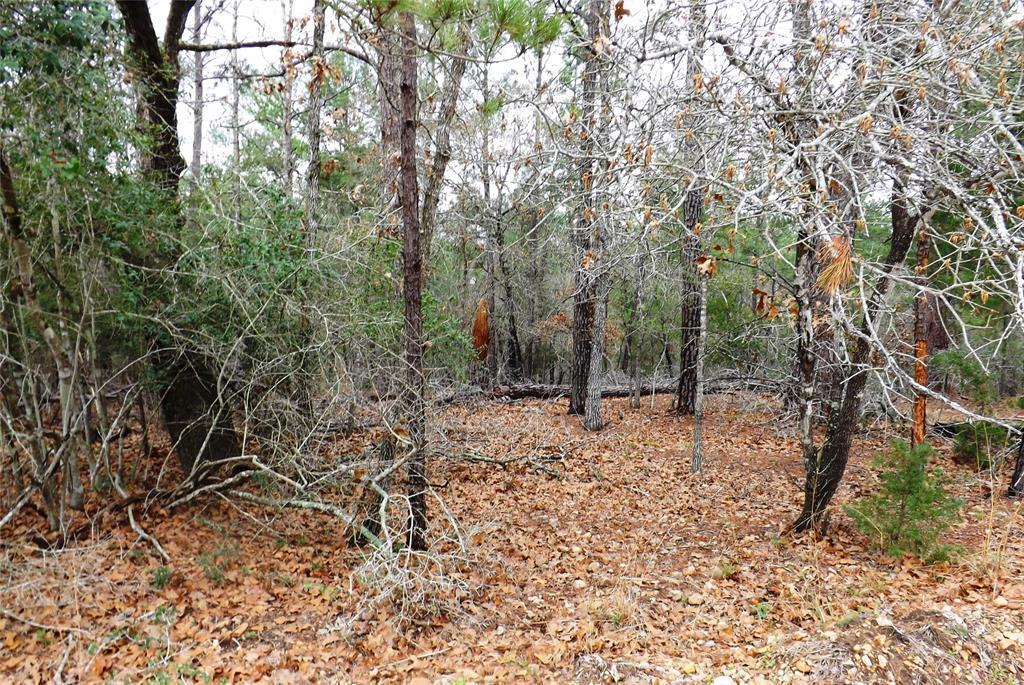 Sold Property | 00 Stephen Lane La Grange, Texas 78945 2