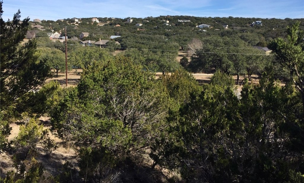Sold Property   310 Alloway Drive Spicewood, TX 78669 1