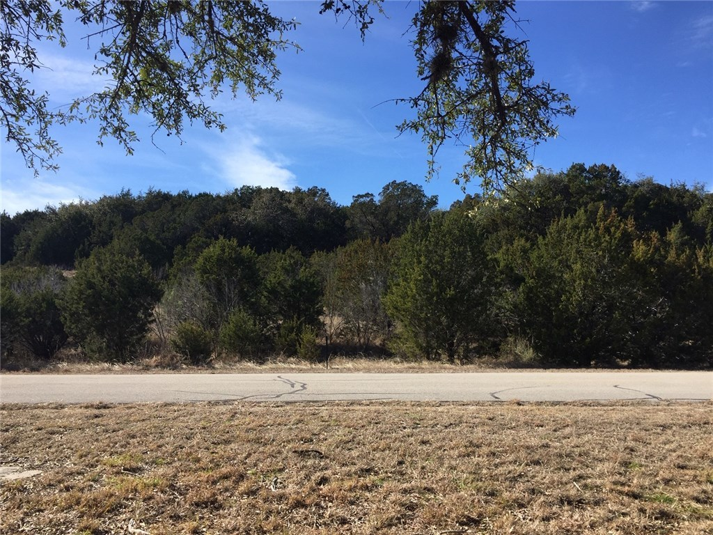 Sold Property   310 Alloway Drive Spicewood, TX 78669 14