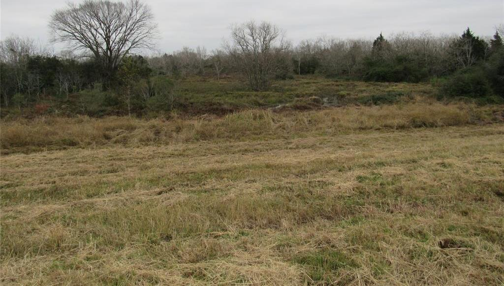 Sold Property | TBD Hwy 90  Cat Spring, Texas 78933 5