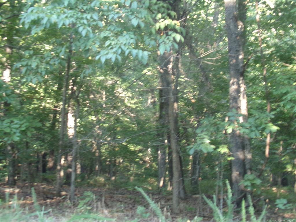 Off Market    E 540 Road Locust Grove, Oklahoma 74352 2