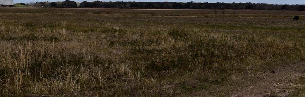 Active | 00 County Rd 147 Landfill Road Van Vleck, Texas 77414 8