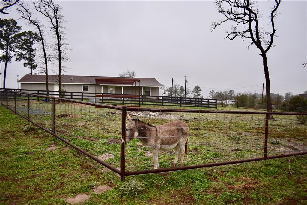 Sold Property | 114 Limousine Lane Bastrop, TX 78602 18