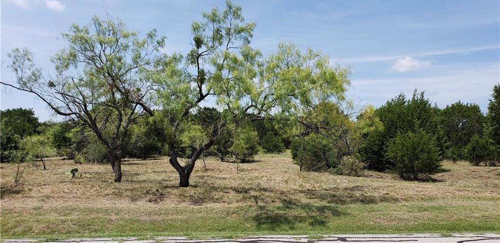 Active | 19A Ridge Harbor Drive Spicewood, TX 78669 0