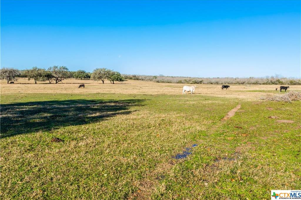 Sold Property | 6519 CR 342  Beeville, TX 78102 17
