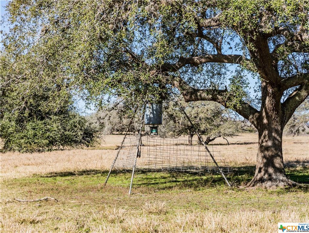 Sold Property | 6519 CR 342  Beeville, TX 78102 38