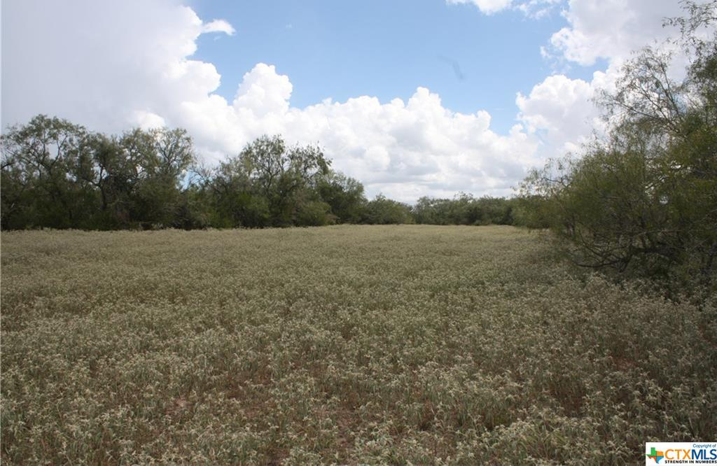 Sold Property | 0 CR 342  Beeville, TX 78102 18