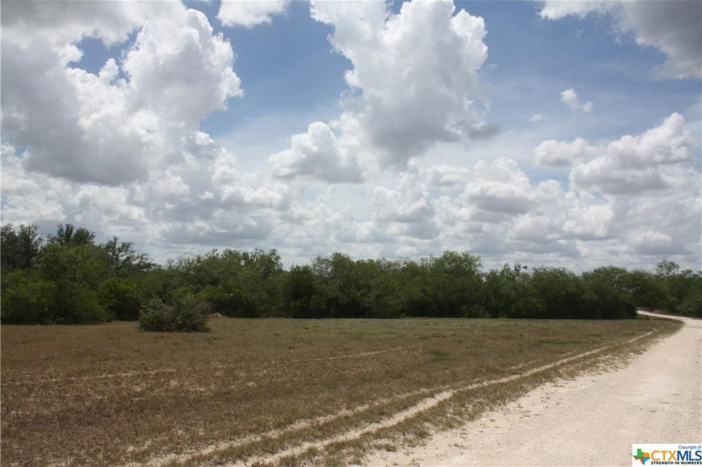 Sold Property | 0 CR 342  Beeville, TX 78102 3