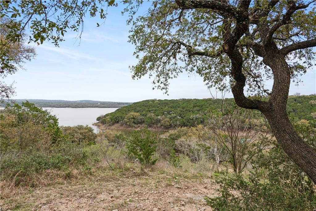 Sold Property | 389 Turkey Tree Road Spicewood, TX 78669 0