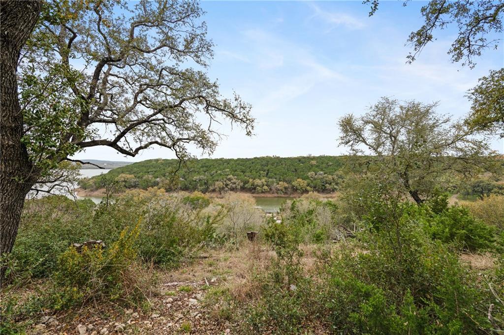 Sold Property | 389 Turkey Tree Road Spicewood, TX 78669 30