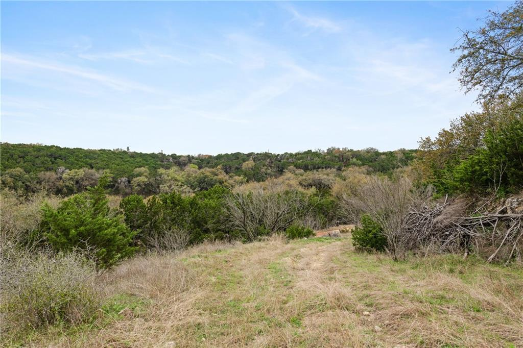 Sold Property | 389 Turkey Tree Road Spicewood, TX 78669 33