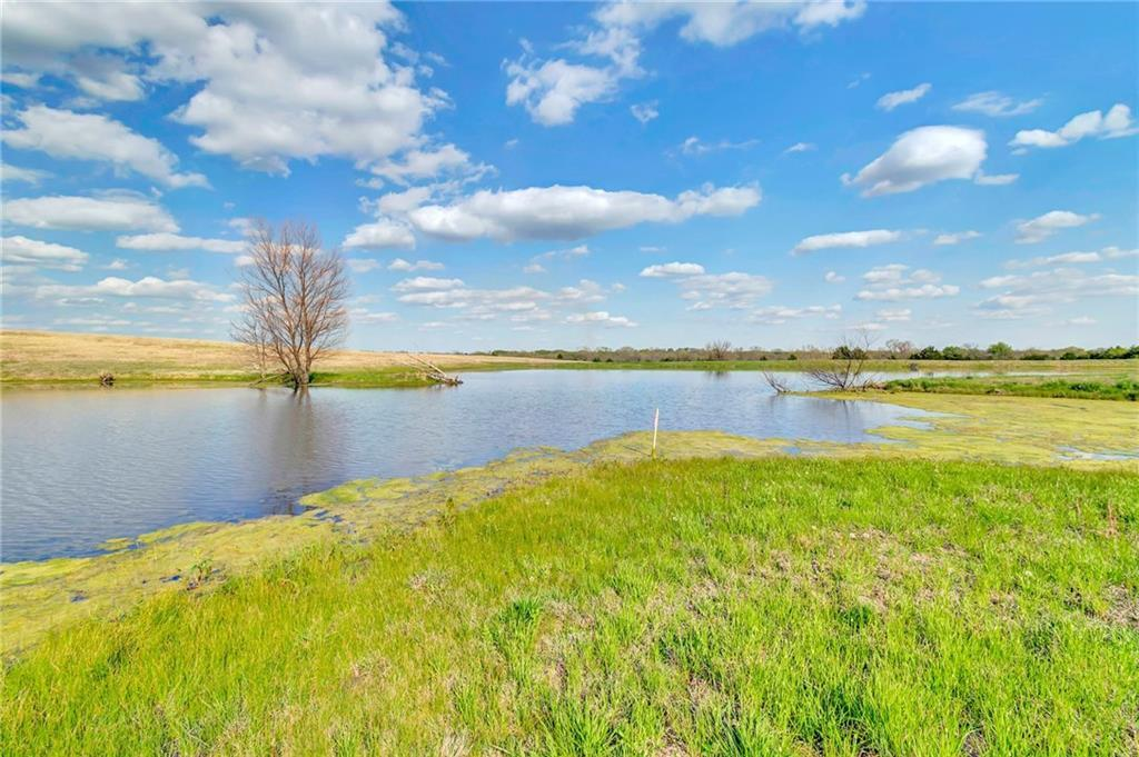 rural homes for sale, collin county country homes, rural properties | 10800 State Highway 78 Blue Ridge, Texas 75424 29